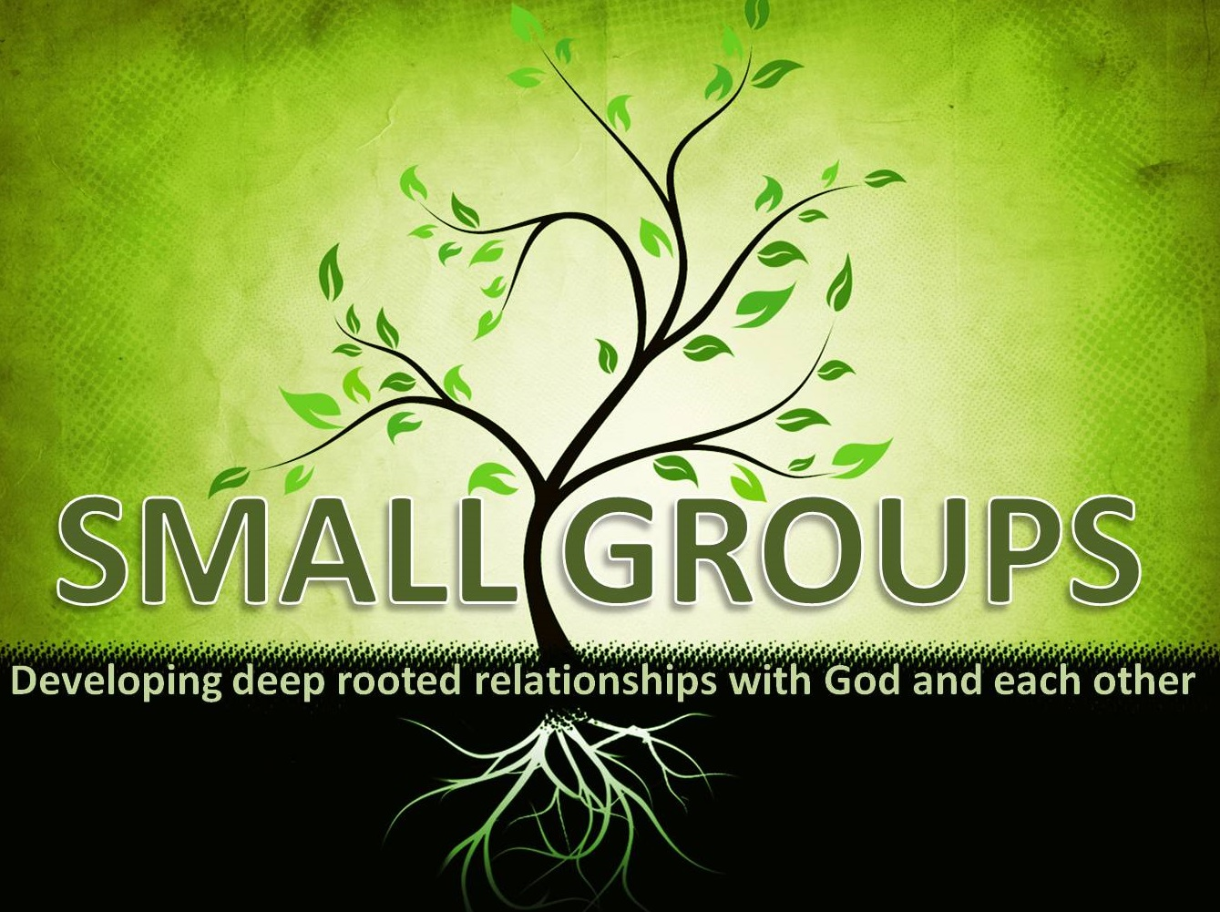 Palm_small_groups_2